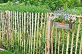 STILTREU Staketenzäune Staketenzaun Kastanie Höhen 50 cm - 200 cm, 5 Meter Rolle, 3 Versch. Lattenabstände (Länge x Höhe: 500 x 100 cm, Lattenabstand: 8-10 cm)