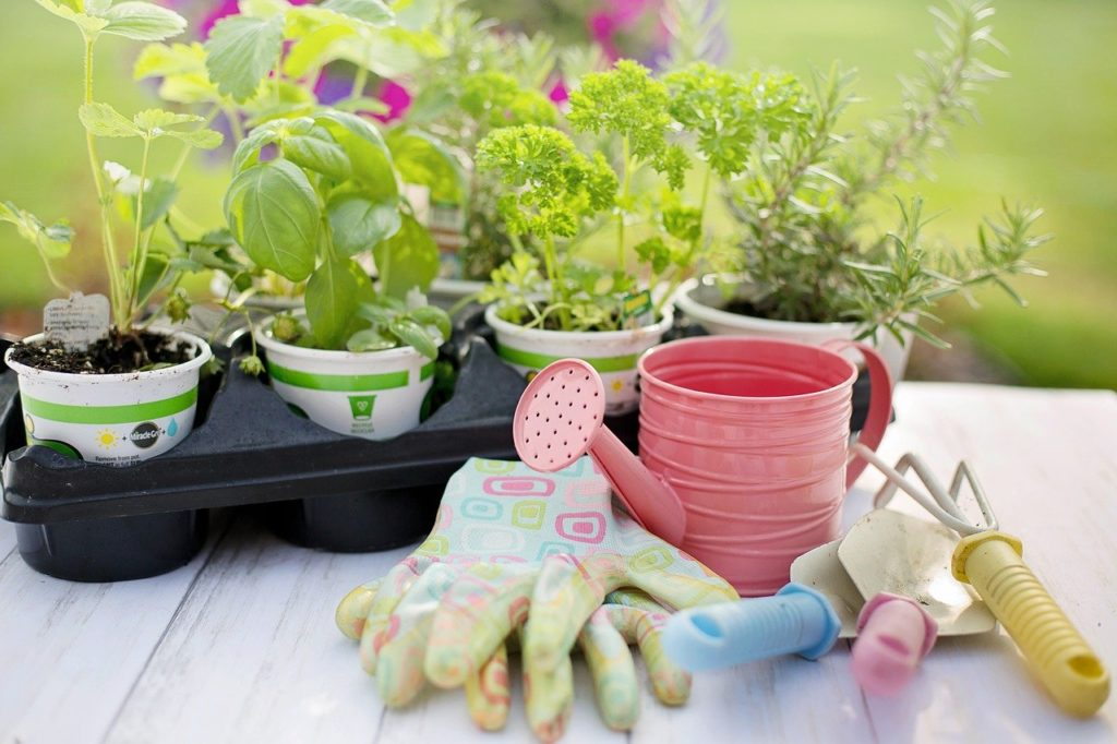Profi Gartenwerkzeug