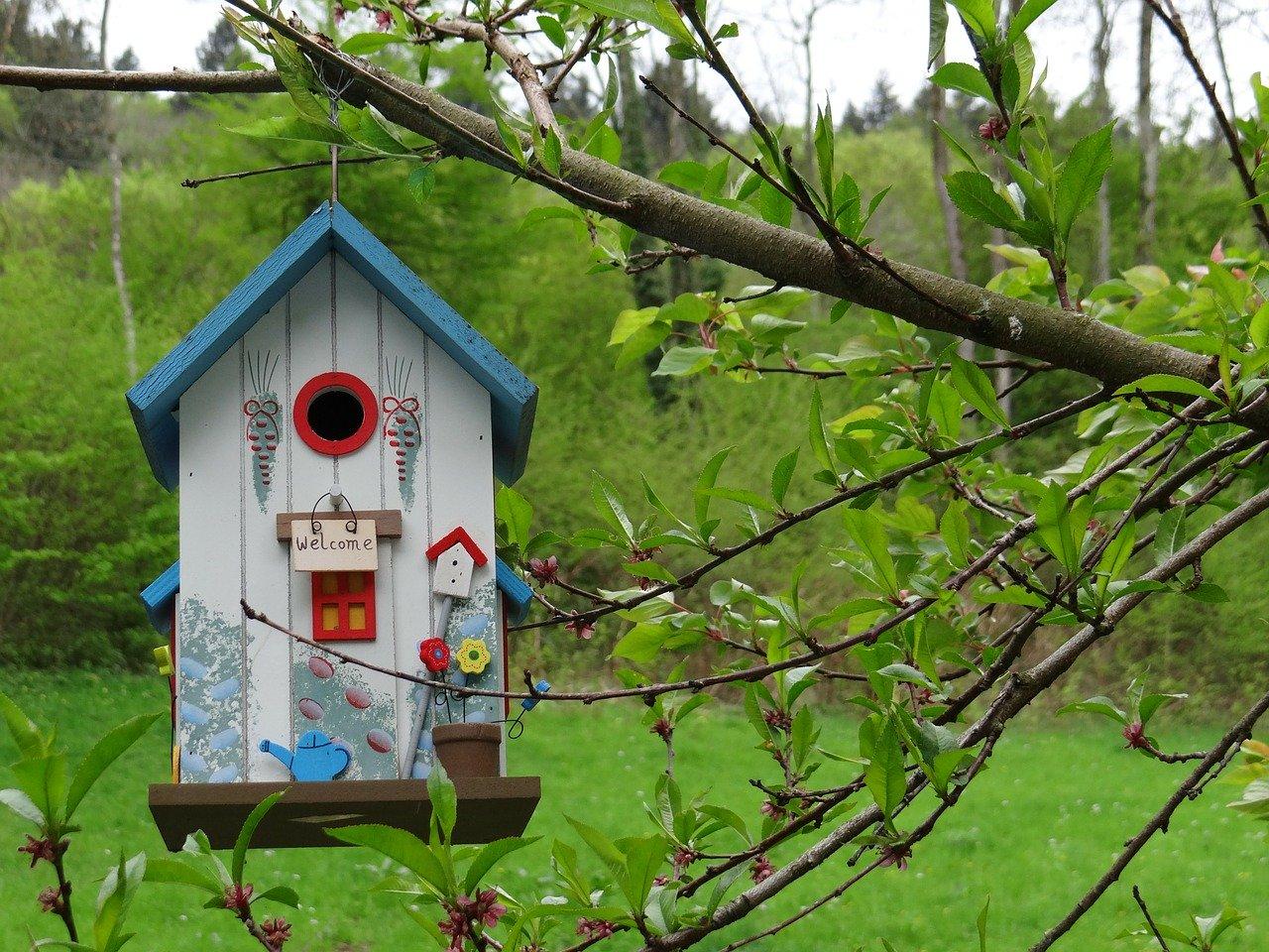 Vogelhaus bauen Bauanleitung