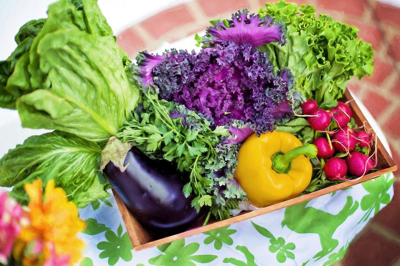 Universaldünger für Obst und Gemüse